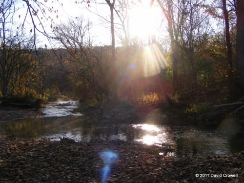 Morning sun over creek