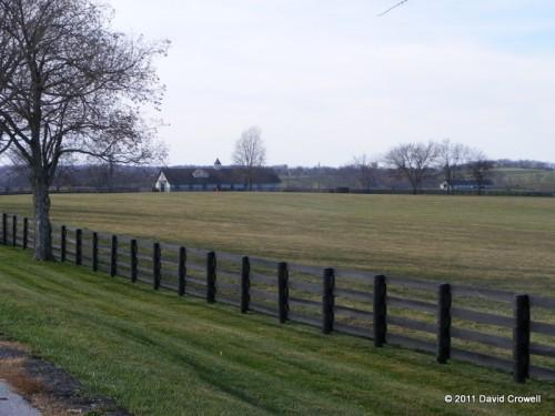 Horse farms on New Cut Rd